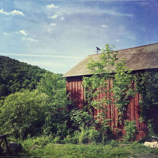 weather vane barn image