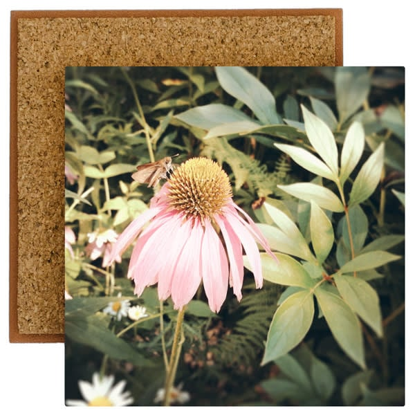 Pink Cone Flower Photo Tile