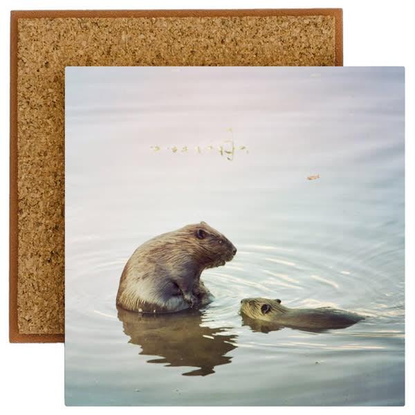 Beavers Photo Tile