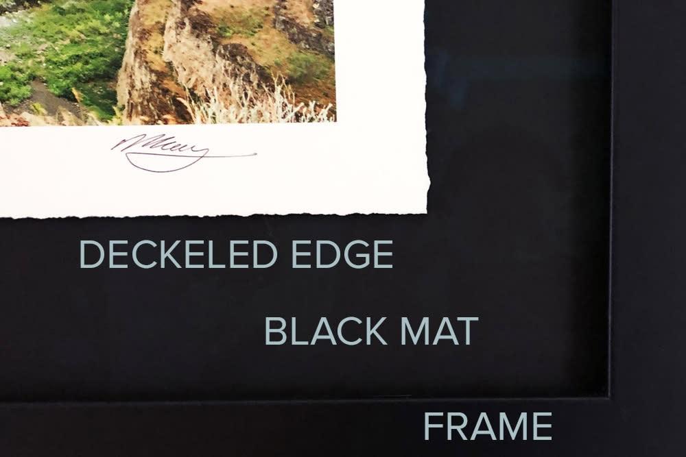 LE edge detail