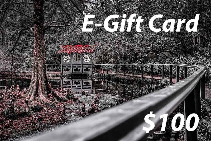 Gift Card 100v2