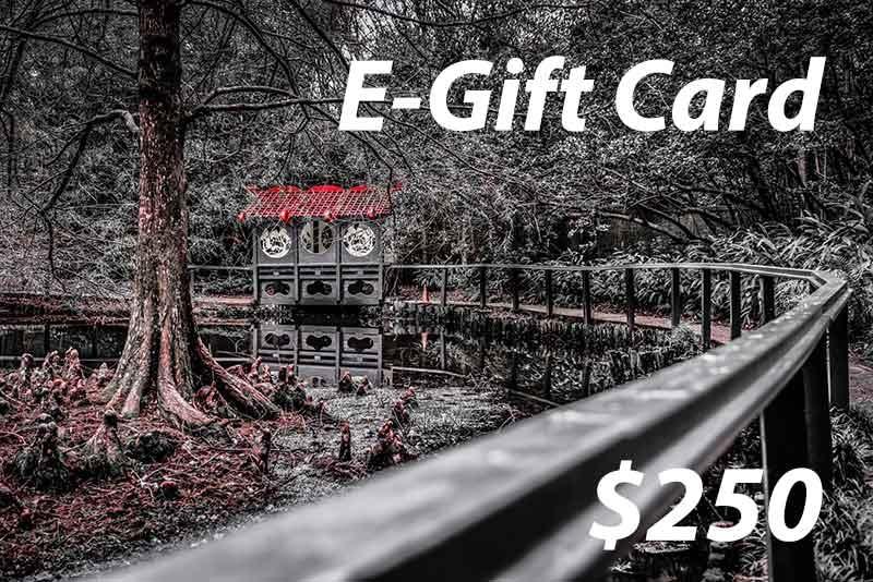 Gift Card 250v2
