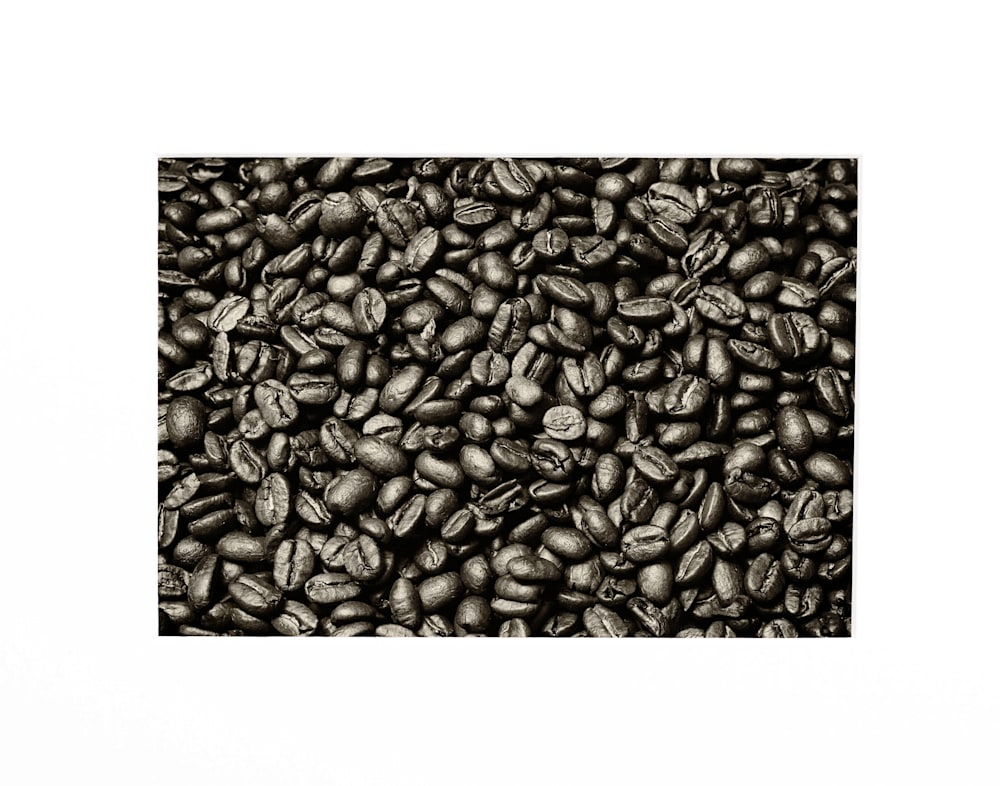 Andy Crawford Photography The whole bean