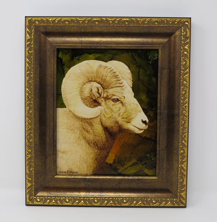 sheep with frame