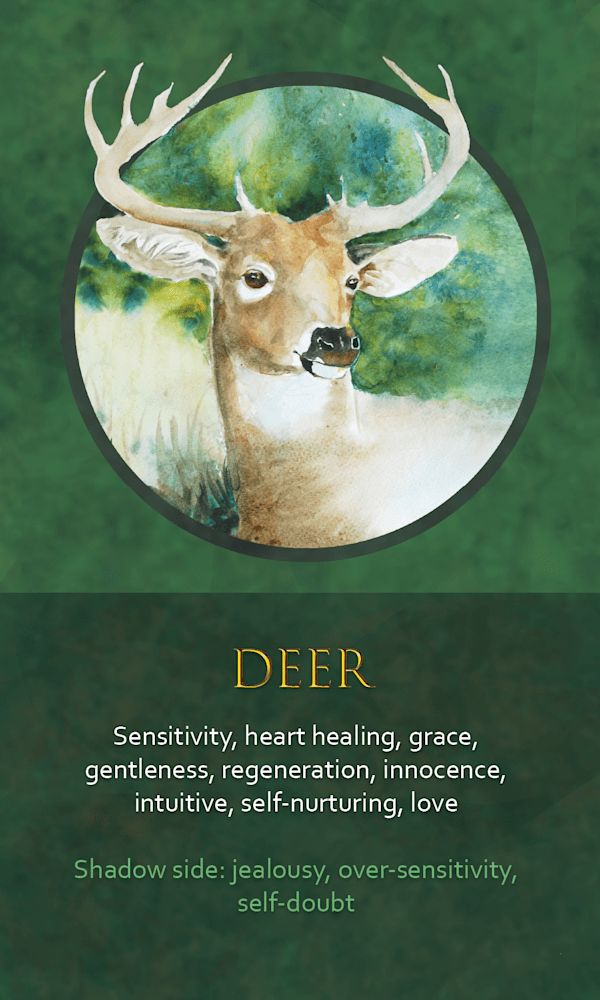 13 spirit animal oracle card deer