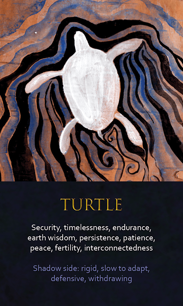 19 spirit animal oracle card turtle