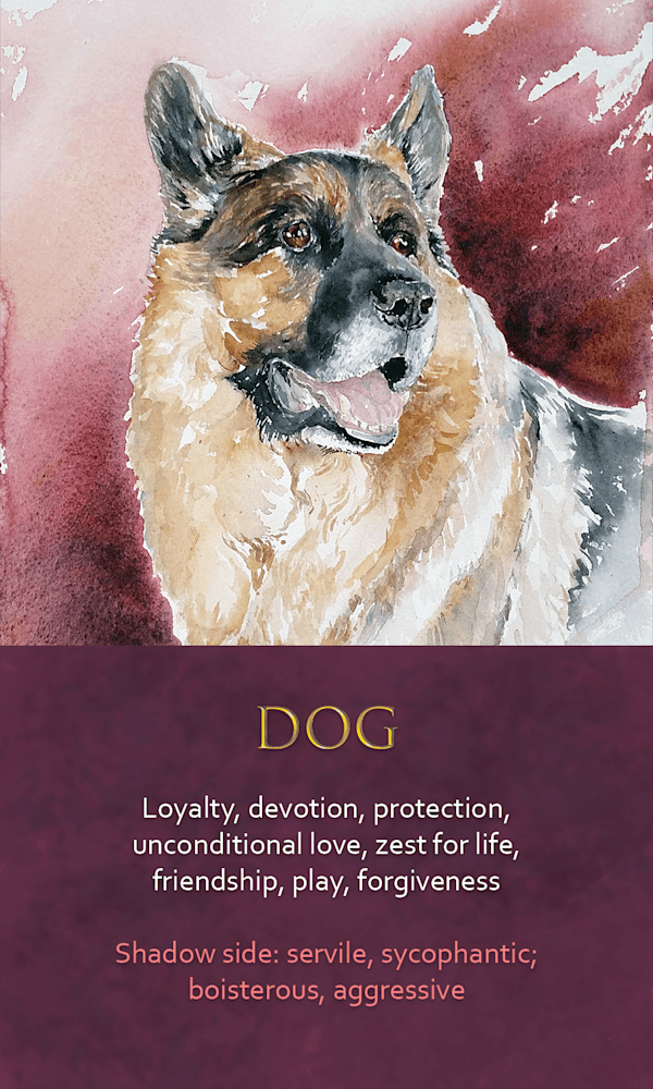 20 spirit animal oracle card Dog