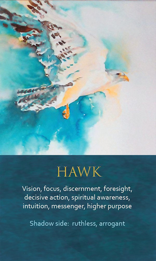 2 Spirit Animal Oracle Card Hawk