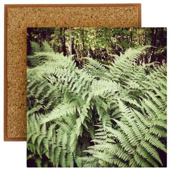 Ferns Photo Tile