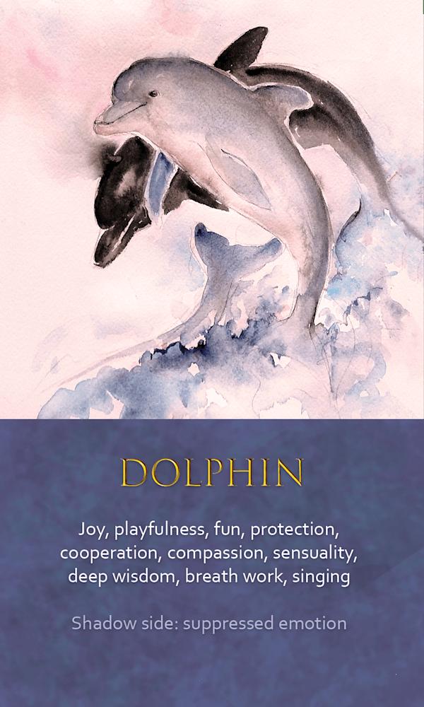 9 Spirit Animal oracle card Dolphin