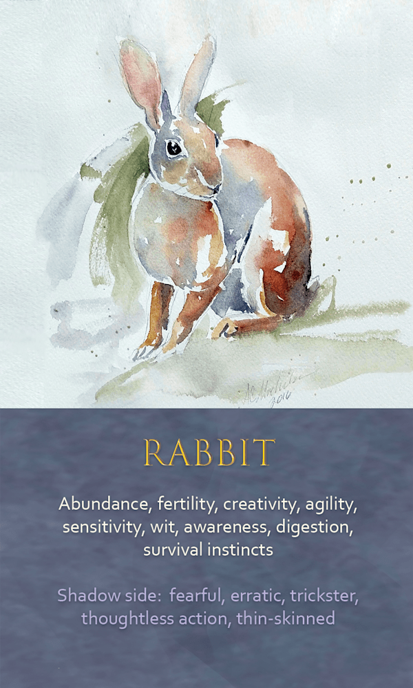 5 Spirit animal oracle card Rabbit
