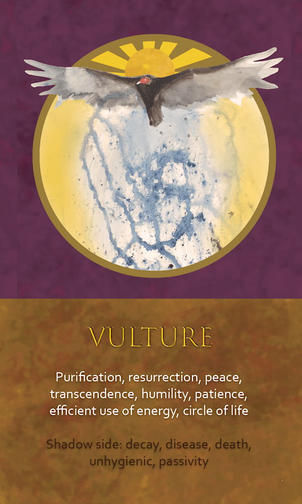 10 Spirit Animal oracle card Vulture