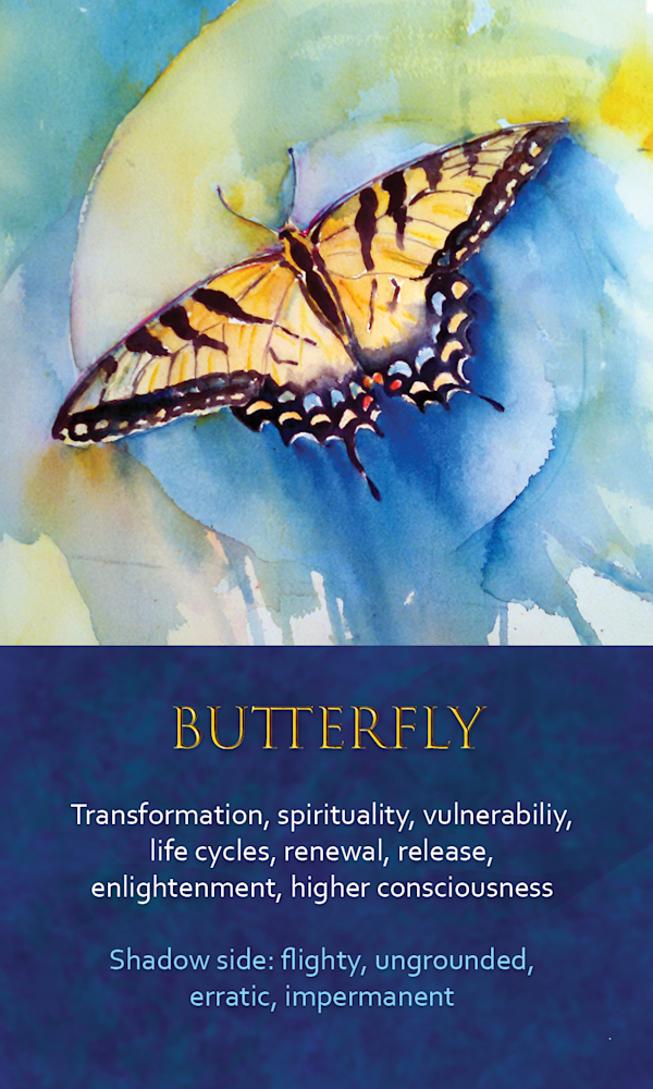 11 Spirit Animal oracle card Butterfly