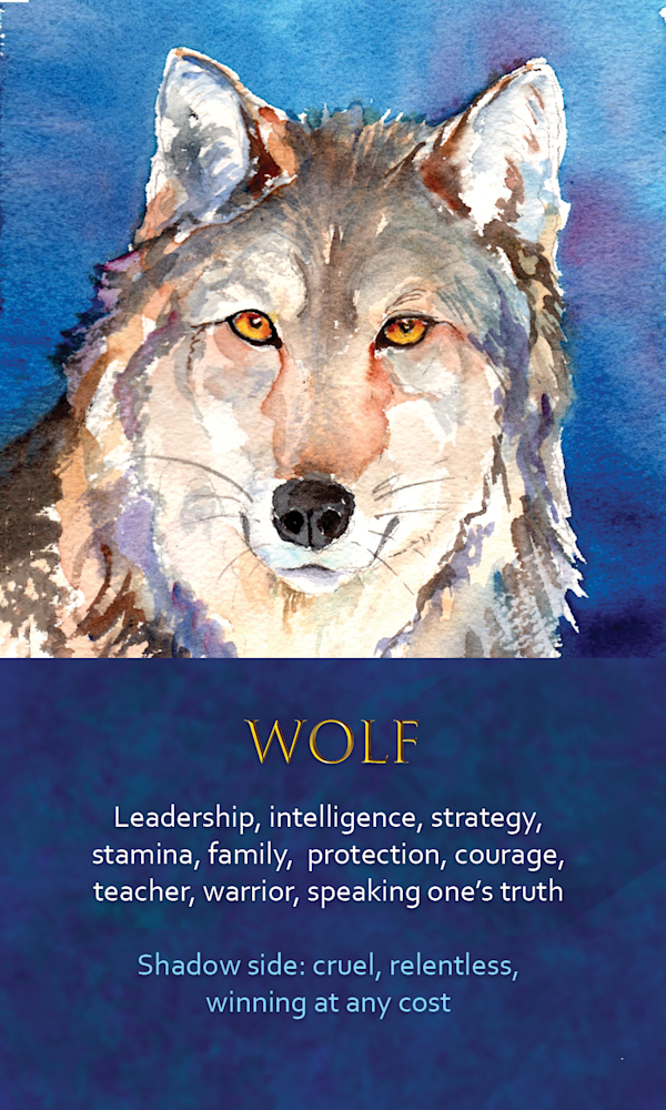 12 spirit animal oracle card wolf