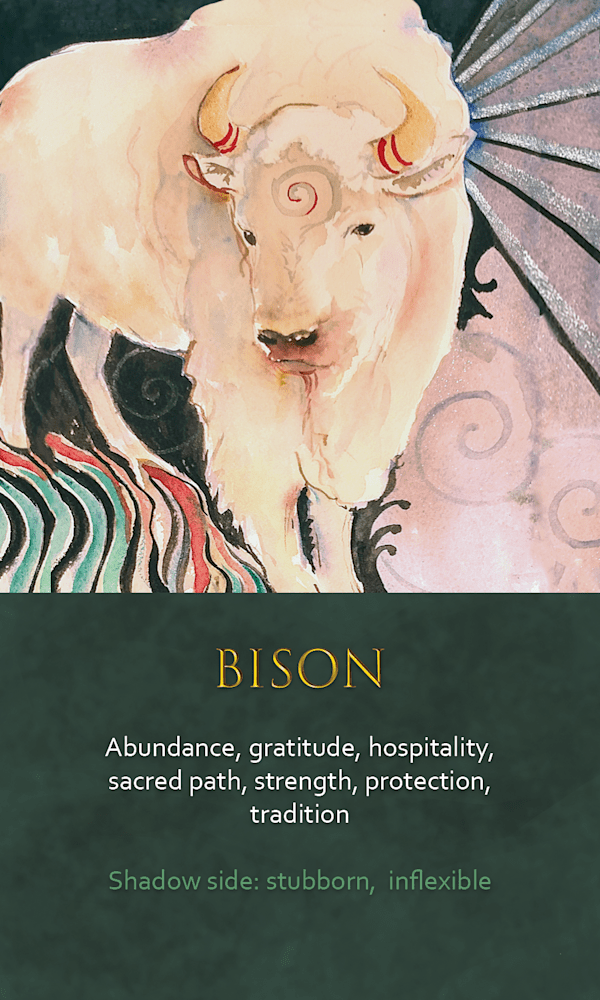 16 spirit animal oracle card Buffalo