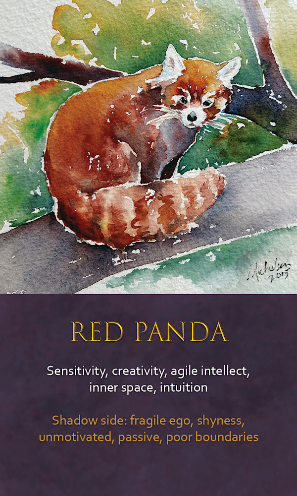 18 Spirit animal oracle card Red Panda