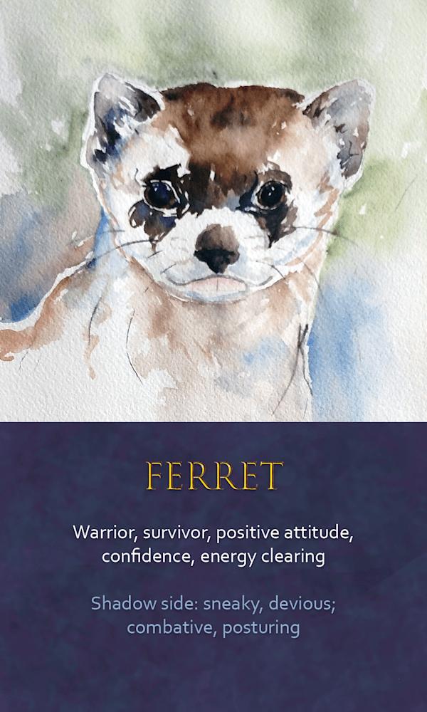 22 Spirit Animal Oracle Card Ferret