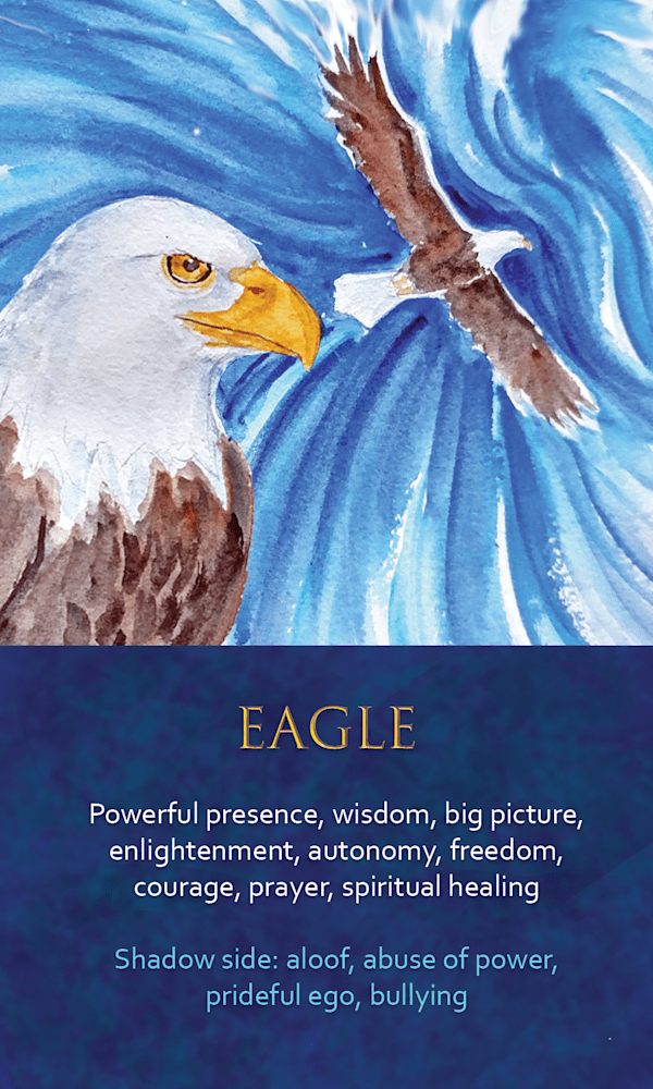 25 Spirit Animal Oracle Card Eagle