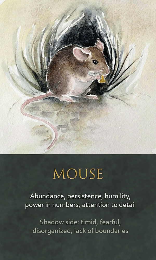 24 spirit animal oracle card Mouse