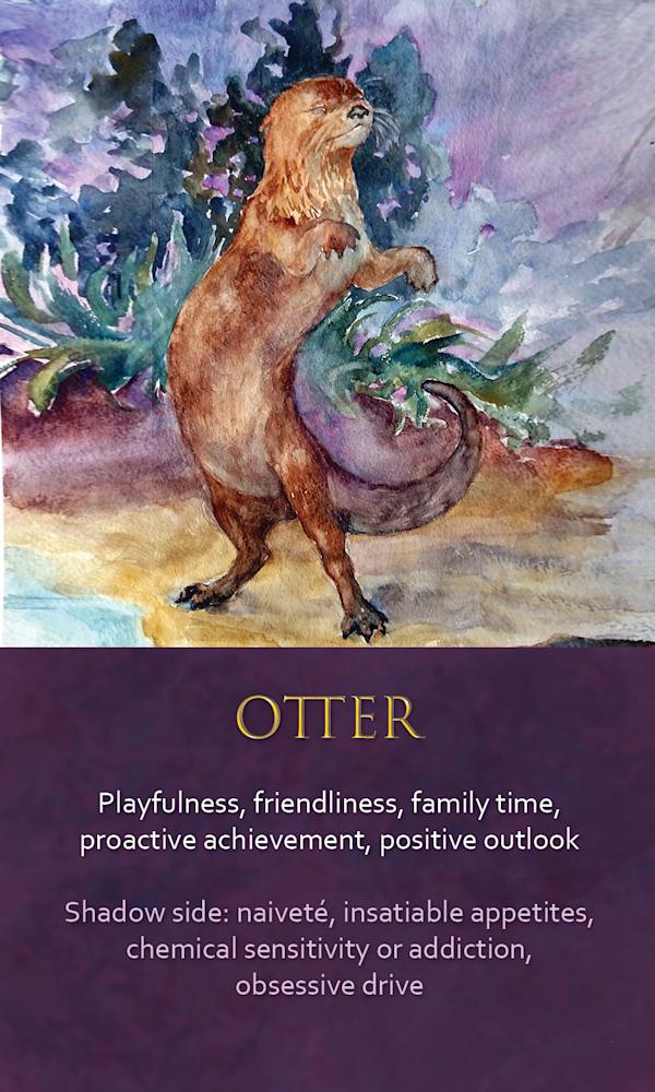 28 spirit animal oracle card Otter