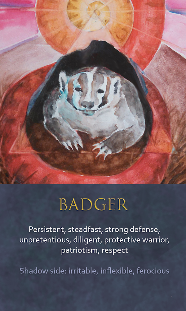 33 spirit animal oracle card Badger