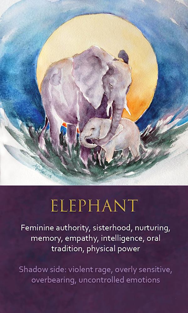 30 Spirit animal oracle card Elephant