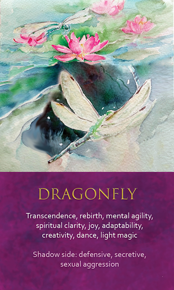 31 spirit animal oracle card Dragonfly