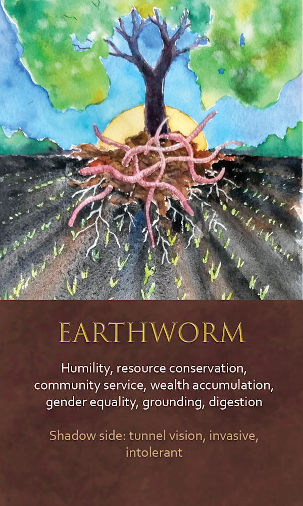 32 spirit animal oracle card Earthworm