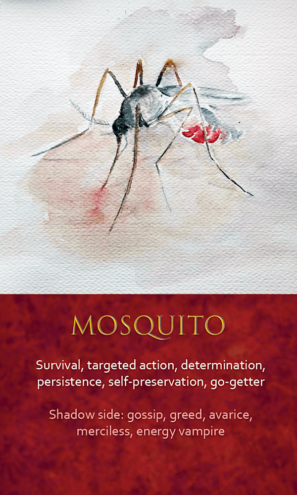 35 spirit animal oracle card Mosquito