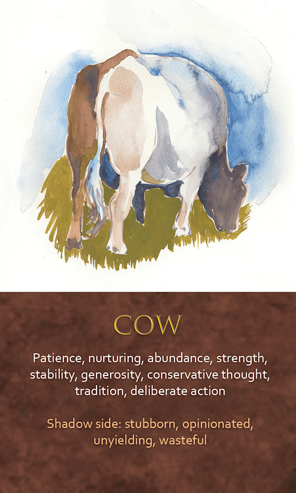 39 spirit animal oracle card Cow