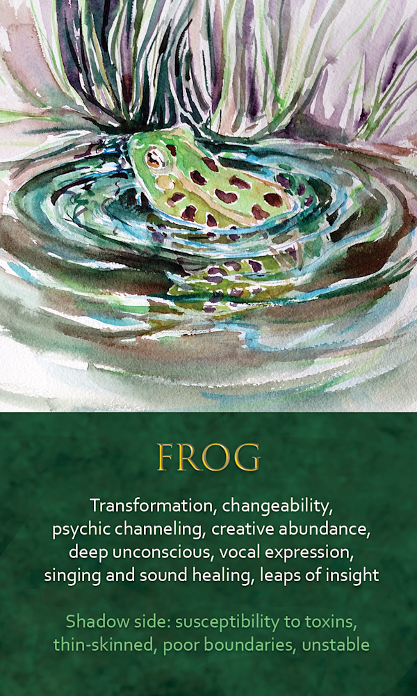 38 Spirit Animal oracle card Frog