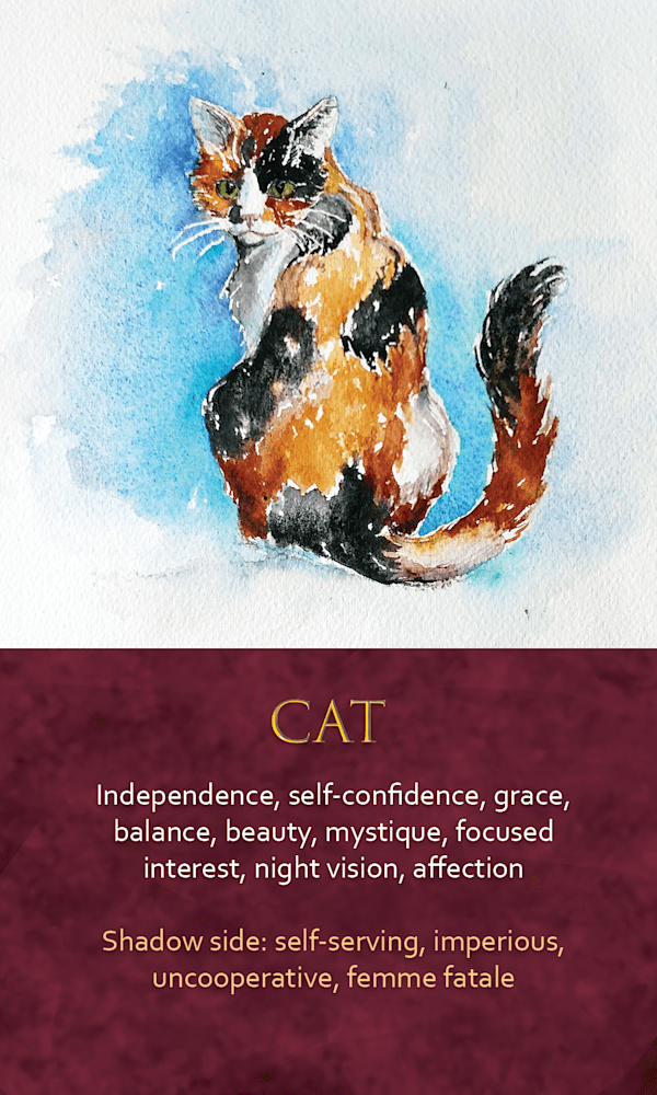 40 spirit animal oracle card Cat