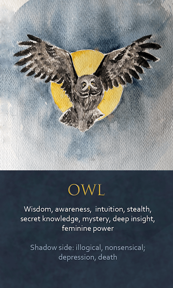 41 spirit animal oracle card Owl