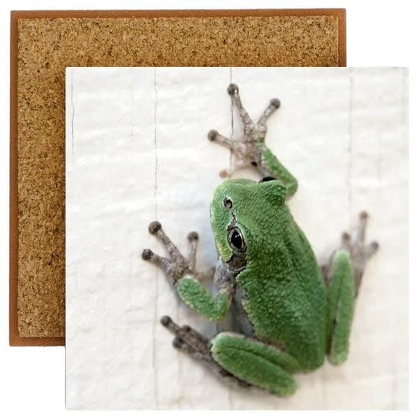 Frog Photo Tile