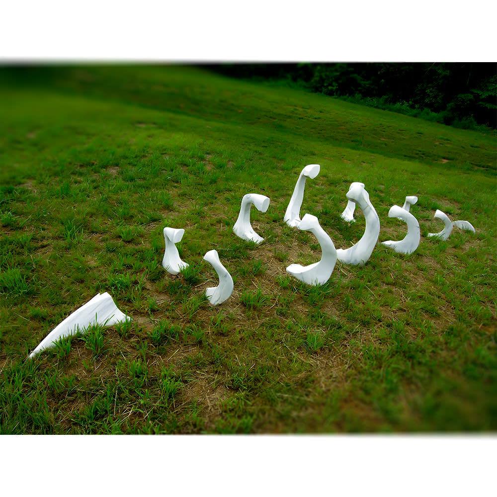 all sculpture 1000x1000 0018 Bones