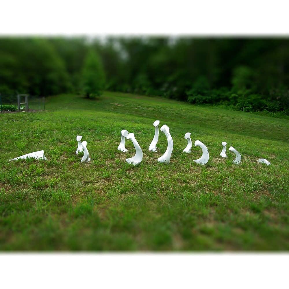all sculpture 1000x1000 0017 Bones
