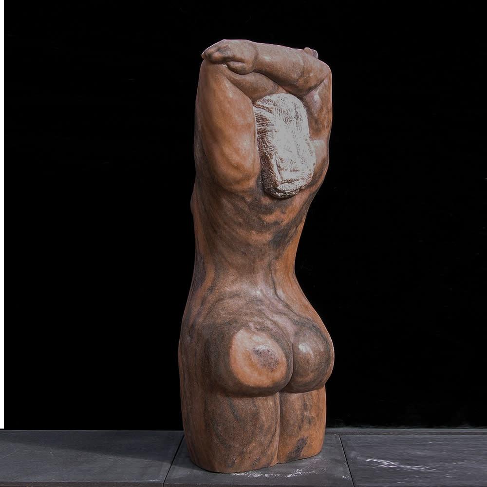 all sculpture 1000x1000 0036 Caratid back