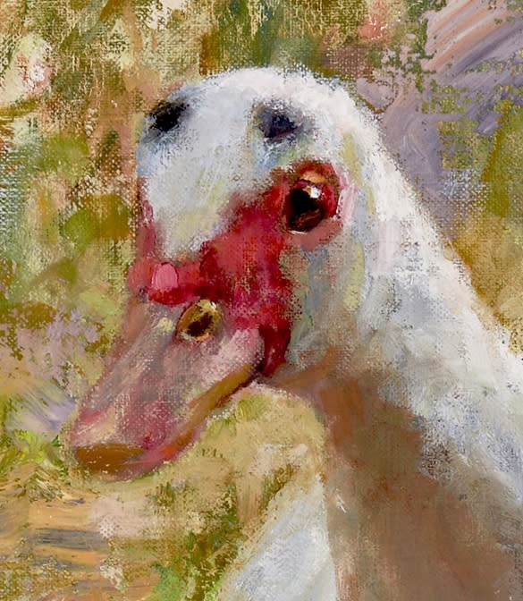 Detail Waddle 1