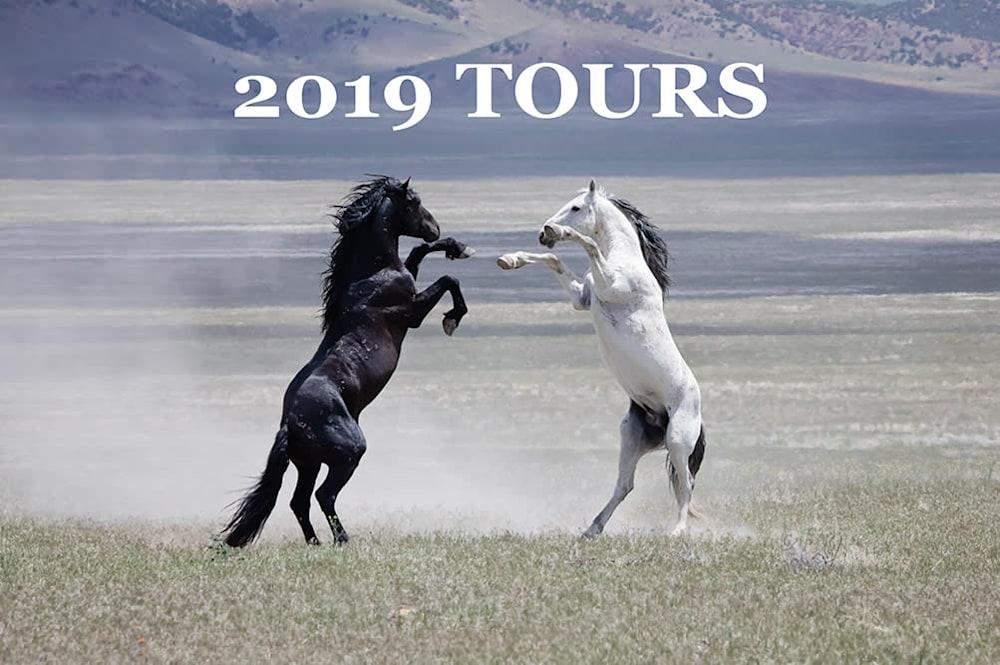 tours product tile