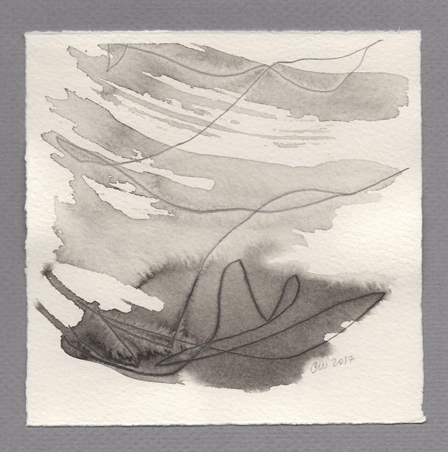 kites 5