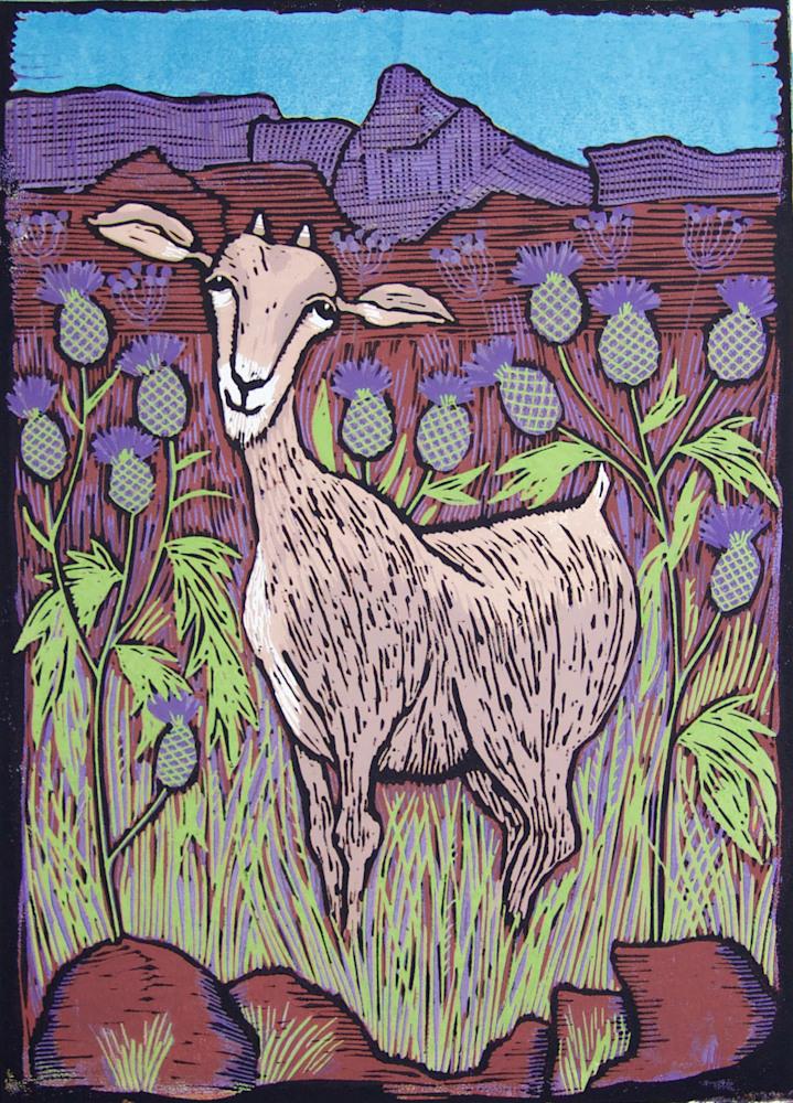 goat new image