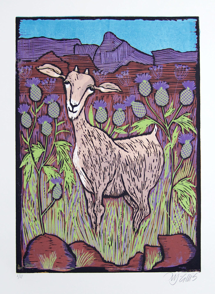 goat new