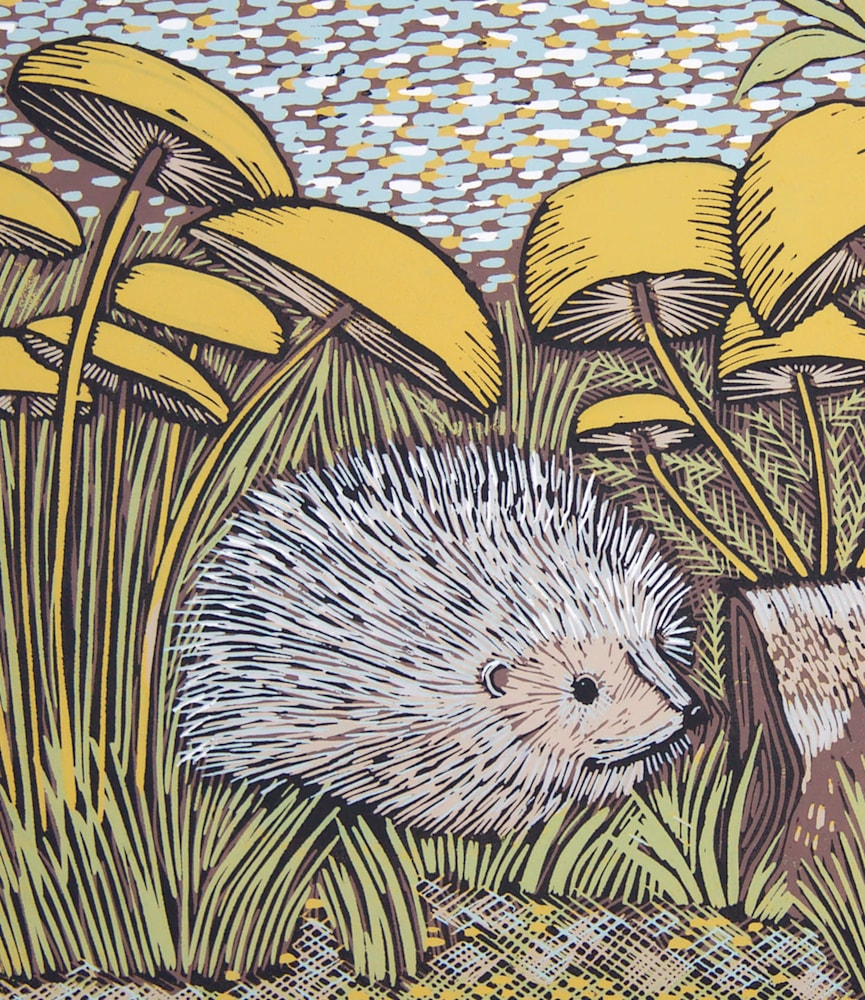 Hedgehog detail