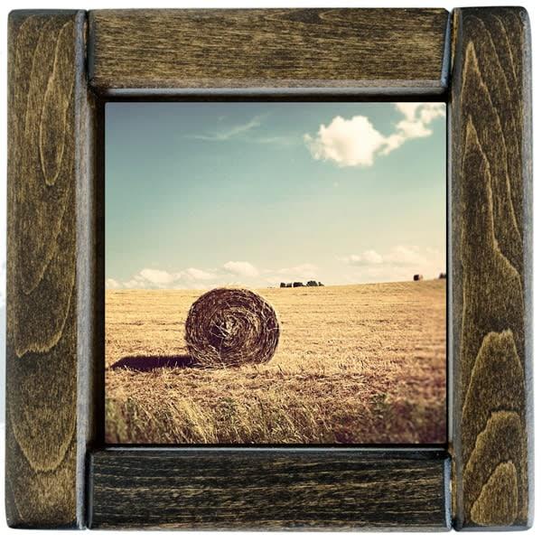 hay bales 1 framed