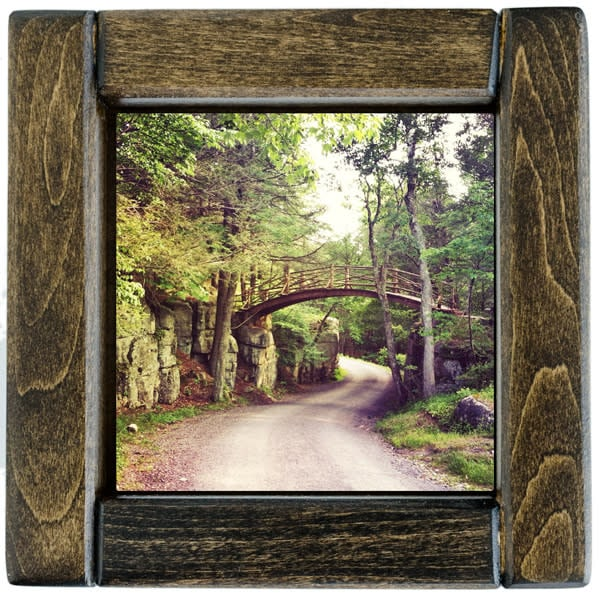 minnewaska bridge framed