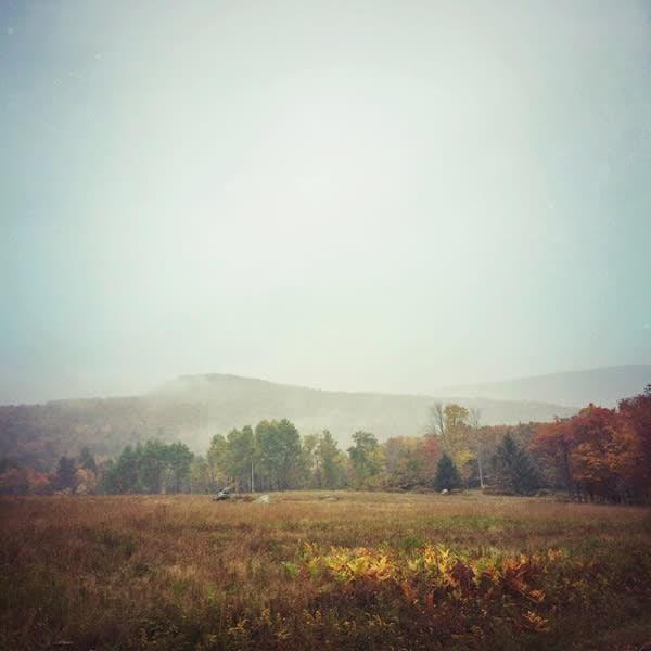 Autumn Field image