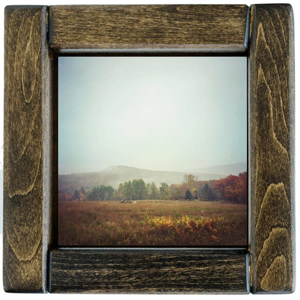 autumn field framed