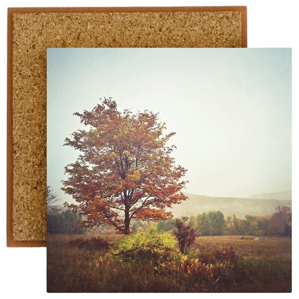 Red Hill tree photo tile