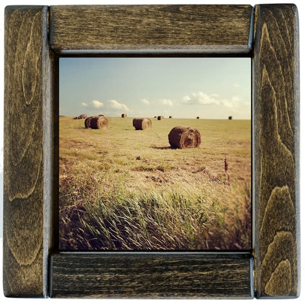 hay bales 2 framed