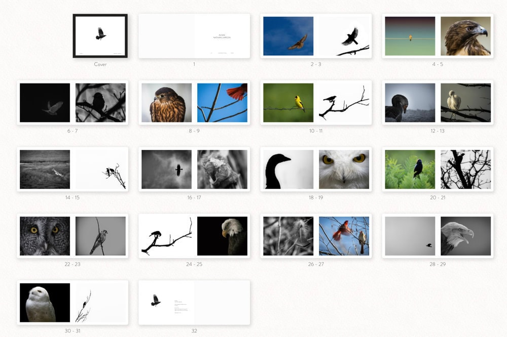 avian+book